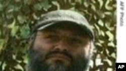 Hezbollah Terrorist Killed