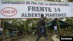 Cerca de 7.000 guerrilleros que ya están en las zonas veredales transitorias de normalización (ZVTN).