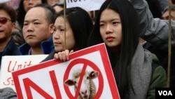 纽约万人集会声援华裔前警员梁彼得(美国之音章真拍摄)