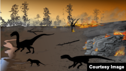 This artist illustration depicts Karoo firewalking dinosaurs dating back to the Early Jurassic geologic period. (Heterodontosaurid silhouette is courtesy of Viktor Radermacher, via PLOS ONE.)