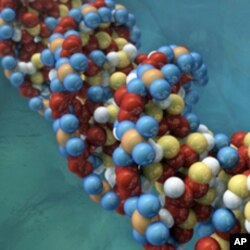 The 1000 Genomes Project aims to sequence the genetic code of 2,500 people.