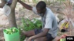 Oxfam Lanse Apèl An Favè Sektè Agrikòl La Ann Ayiti