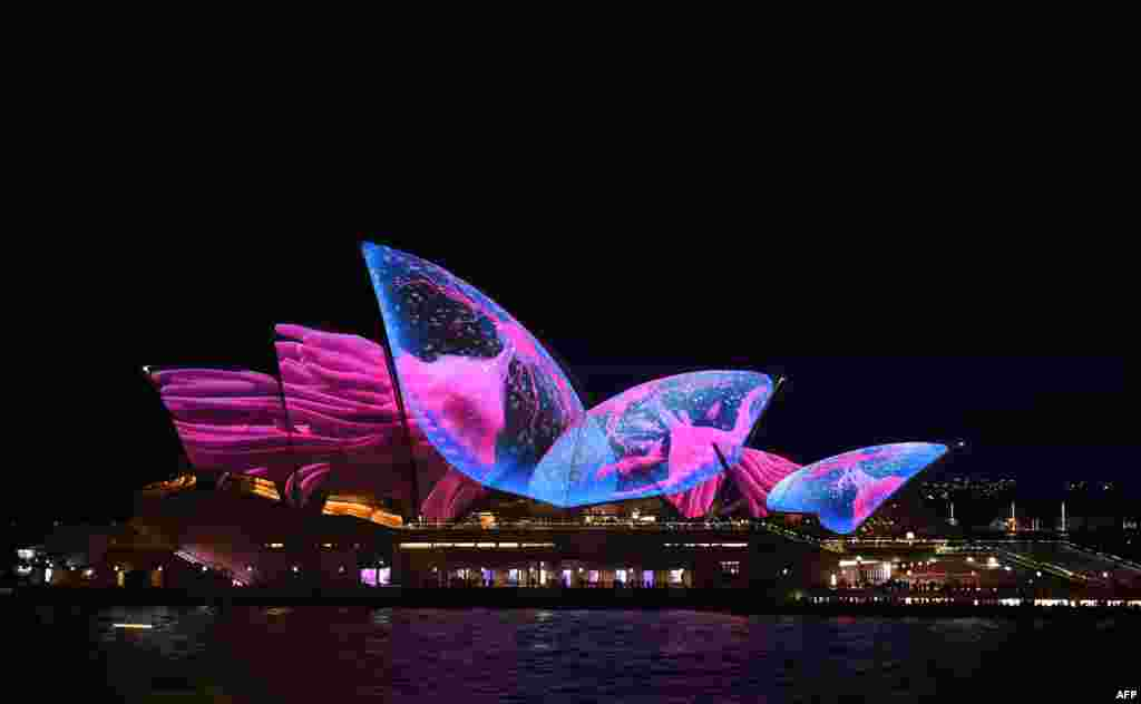 "A light show called ""Vivid"" changes the appearance of the Sydney Opera House in Sydney, Australia."
