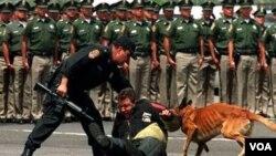 Desde 2006 han muerto en México más de 28.000 personas por la violencia de los narcotraficantes.
