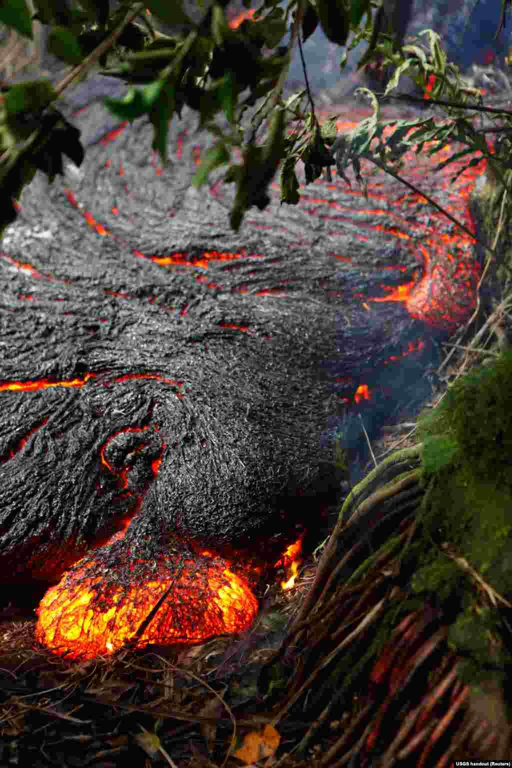 Lahar dari gunung berapi Kilauea mengaliri hutan padatdekat desa Pahoa, Hawaii (1/11).