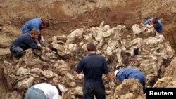 بوسنیا کی اجتماعی قبر سے مقتولین کی باقیات جمع کی جارہی ہیں