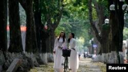 """Hà Nội có kế hoạch """"chặt hạ 1.300 cây xanh, phần lớn là xà cừ lâu năm trong 3 tháng tới"""" để mở rộng đường ở thủ đô, gây ra nhiều chỉ trích trên mạng xã hội."""