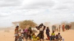 Douze personnes tuées par des voleurs de bétail dans le nord du Kenya