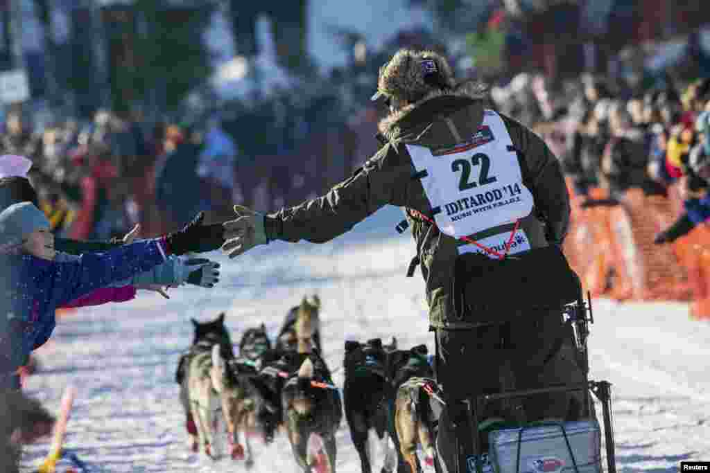 Norwegian Robert Sorlie greets fans as he leaves the start chute during the official restart of the Iditarod dog sled race in Willow, Alaska, March 2, 2014.