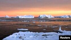 Pingüinos cerca de la estación francesa Dumont d'Urville en la Antártida.