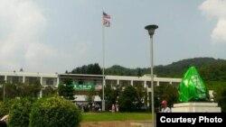 """台湾团体占领省政府后升美国国旗(""""美国台湾政府""""提供)"""