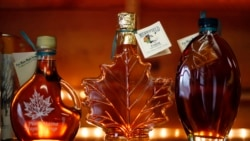 [VOA 현장영어 오디오] Maple sap is known to be good for your health