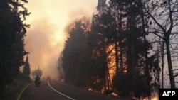 Zjarr i madh në Izrael, qeveria kërkon ndihmë nga jashtë