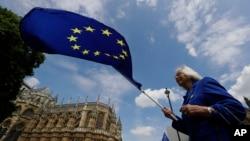 Прихильниця залишення Великобританії в ЄС - протест перед будинком парламенту у Лондоні