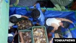 북한산 수산물 하역작업을 하는 인부들(자료사진)
