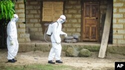 A healthcare worker in protective gear sprays disinfectant around the house of a person suspected to have Ebola virus in Port Loko Community, situated on the outskirts of Freetown, Sierra Leone, Oct. 21, 2014.