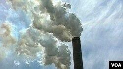 Menurut hasil penelitian, polusi udara bisa mempengaruhi penurunan daya pikir kita.