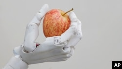 FILE - Hanson Robotics' robot Sophia holds an apple in Hong Kong, Sept. 28, 2017.