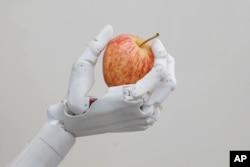 FILE - Hanson Robotics' robot Sophia holds an apple in Hong Kong, Sept. 28, 2017.