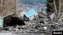 Seattle kentinin kuzeyindeki kırsal kesimde meydana gelen toprak kayması 30 evi yerle bir etti