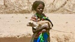 Oromoon Karrayyuu waan hedduun lafa dhabuutti jira