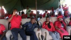 Ezinye iziphathamandla zebandla leMDC-T ekade zikhona kusungulwa uhlelo lokuvota olwe Beletha Umntwana Sihambe.