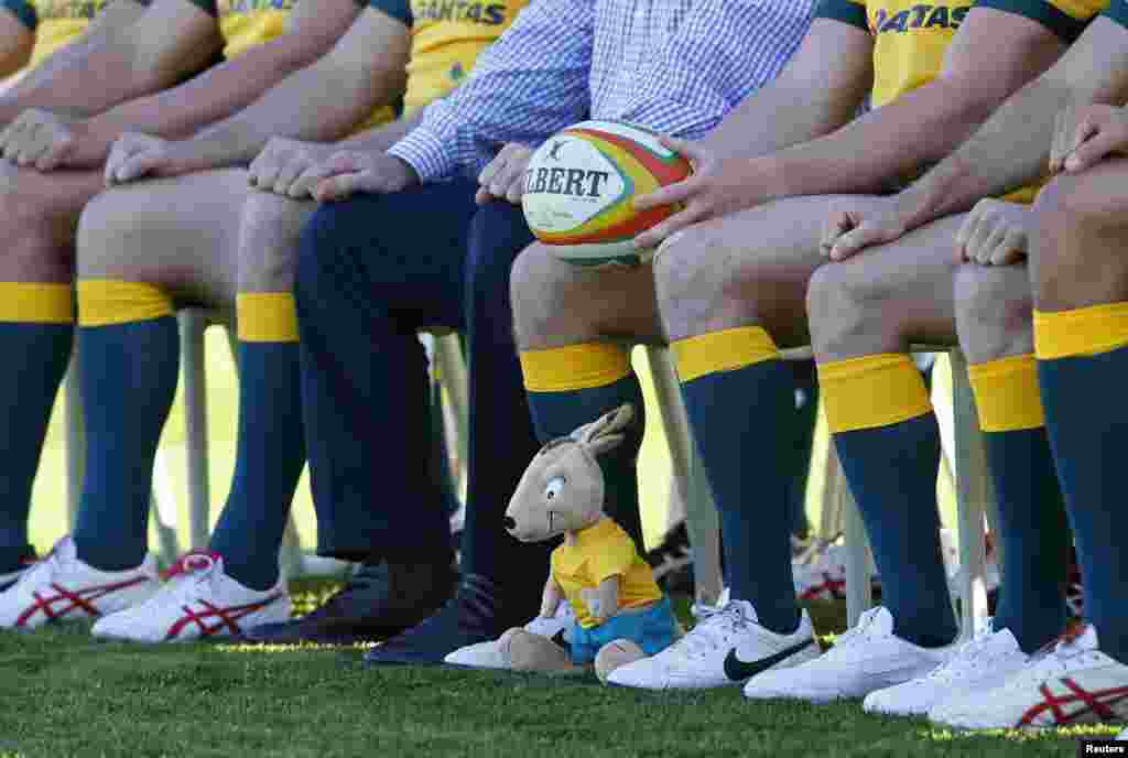 A stuffed toy mascot in the likeness of a wallaby is seen at the feet of Australia's Wallabies Rugby Union team captain Michael Hooper in Sydney.