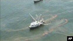 خلیج میکسیکو میں بہنے والا تیل فلوریڈا کی طرف بڑھ رہاہے