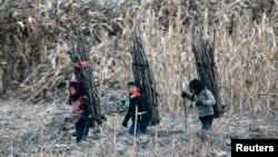 지난달 16일 북-중 접경 지역인 신의주의 압록강변에서 북한 소녀들이 땔감을 나르고 있다.