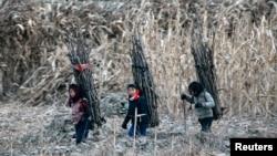 지난 2013년 12월 북한 신의주의 압록강변에서 여자 아이들이 나무를 지고 가고 있다.
