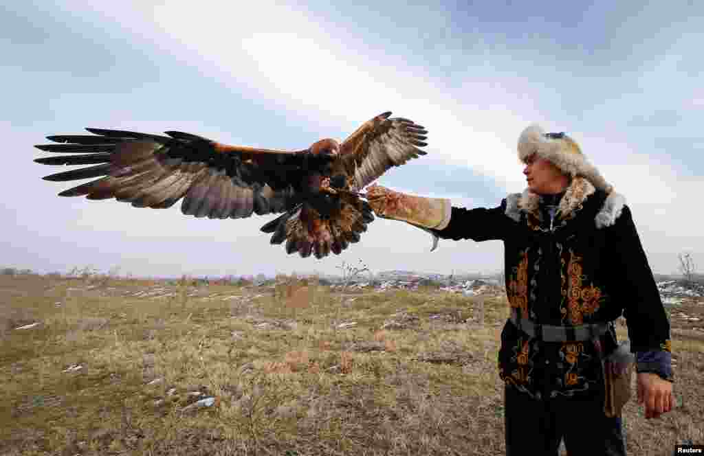 آموزش یک عقاب در دهکدهای در نزدیکی شهر آلماتی در قزاقستان.