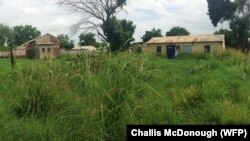 Shrubbery has overtaken parts of the South Sudan town of Malakal that used to be bustling with activity.