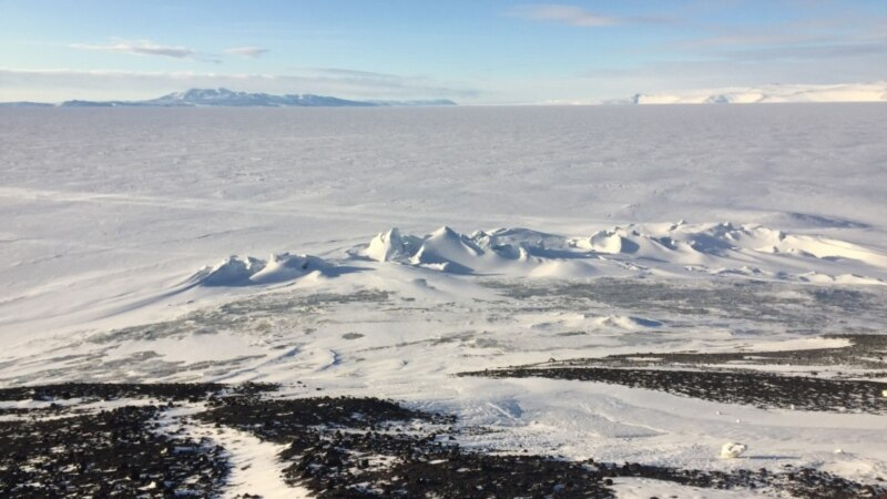 Niklo povrće na Antarktiku, bez zemljišta i svetla