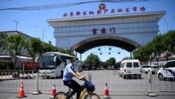 中國網絡觀察:三文魚背鍋