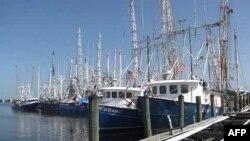 Ribarski brodići u Meksičkom zalivu