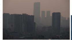 Quiz - Air Pollution May Affect Every Organ, Cell in the Body