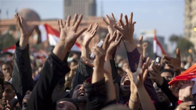 Anti-government protesters continue to celebrate in Tahrir Square in downtown Cairo, February 12, 2011