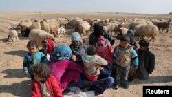 آوارگان سوری رقه را ترک کرده اند