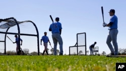 Members of the Tampa Bay Rays take batting practice during a spring training baseball workout in Port Charlotte, Florida, Feb. 26, 2016.