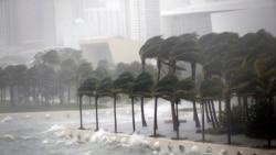 Irma ဟာရီကိန္း မုန္တိုင္းအဆင့္ ၄ ဖေလာ္ရီဒါကမ္းရိုးတန္း ၀င္ေရာက္