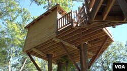 孙达尓夫妇的树屋离地20英尺