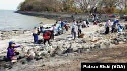 """Sekitar 100 orang muda-mudi yang tergabung dalam """"Global Peace Youth"""" Surabaya, melakukan aksi bersih pantai Kenjeran Surabaya yang banyak terdapat sampah plastik (Foto:VOA/Petrus Riski)."""