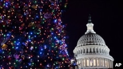 A view of the U.S. Capitol and the Capitol Christmas tree on Tuesday, Dec. 8, 2009, in Washington, during the tree lighting. (AP Photo/Evan Vucci)