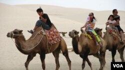 一位邊講手機、邊騎駱駝的當地青人,帶領遊客的駱駝隊漫遊塔克拉瑪干沙漠