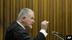 Chief defense lawyer for Oscar Pistorius, Barry Roux, addresses the court, in Pretoria, South Africa, Aug. 8, 2014.