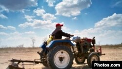 Farmer driving tractor plow field Growth, Tractor, Agriculture, Environment, Nature, Horizontal, Outdoors, Rural Scene, Chinese Ethnicity, Farmer, Driving, Farm, Working, Blue, Sky, Cloud, Dirt, Spring, Field, Wheel, Adult, Dry, Plow, Color Image, Men,