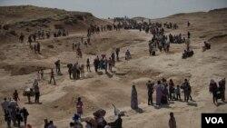 هزاران نفر از اهالی شهر شنگال با حمله داعش، آواره شدند