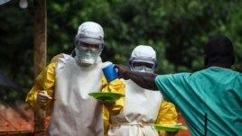 Mbi 1,100 të vdekur nga Ebola