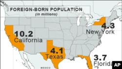Tỉ lệ người gốc nước ngoài tại 4 tiểu bang của Mỹ: California, New York, Texas, và Florida
