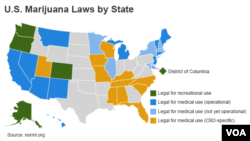 U.S. Marijuana Laws by State